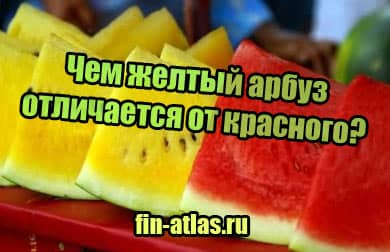 фото Чем желтый арбуз отличается от красного